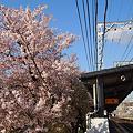写真: 土居駅にて