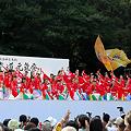 写真: 疾風乱舞_29 - 原宿表参道元氣祭 スーパーよさこい 2011