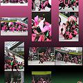写真: dancecompany REIKA組_03 - 第10回ドリーム夜さ来い祭り