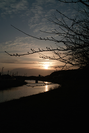 Sunset03162012dp2-01