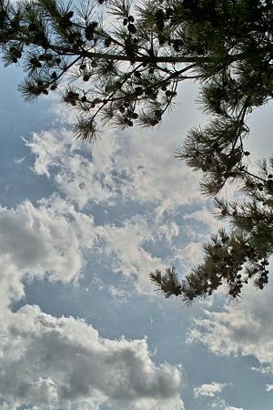 cloud04042012dp2-03