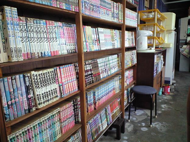 蓬莱2011.11 (2)