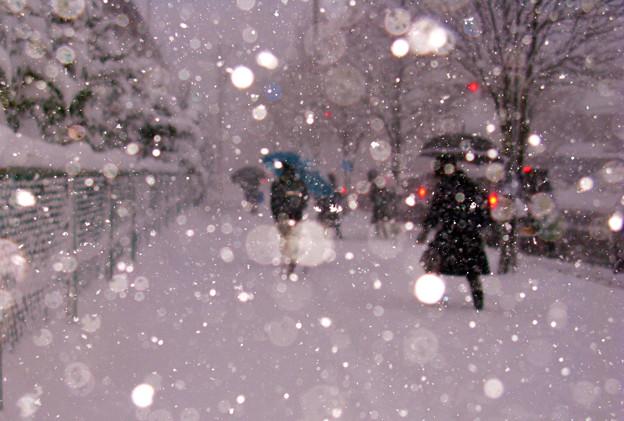 early snow 登校 ☆