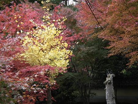 京都 102