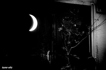 路地裏の月