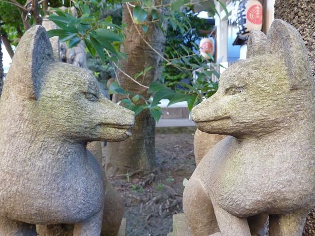 猿江神社 22