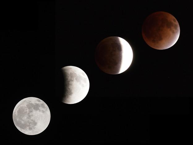 Photos: Lunar eclipse (20111210)