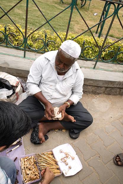 2秒で壊れるボールペンを売る男 @インド マイソール