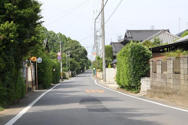 旧水戸街道 若柴宿1
