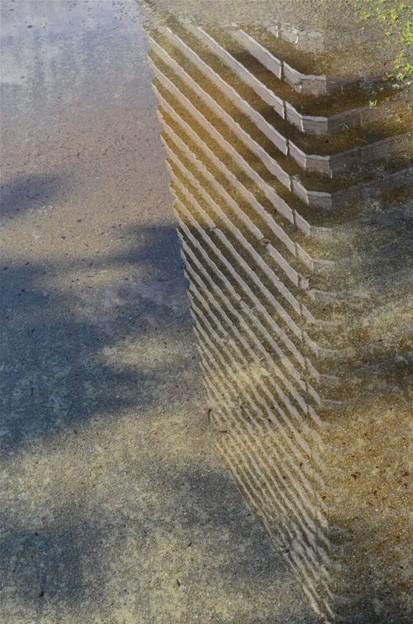 水溜りの反映2