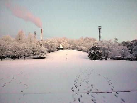 120124 真光寺公園