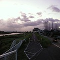 写真: 110804 多摩川サイクリングロード