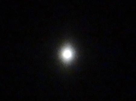 西空に一際輝く金星