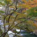 阿武隈渓谷の秋