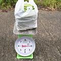 ソラマメ2kg