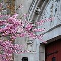 Photos: St. John's Church