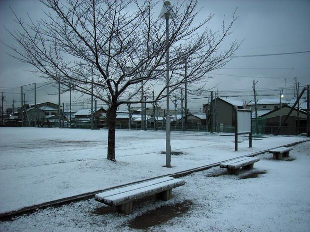 冬将軍 (2) 2012年 2月
