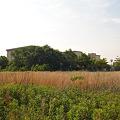 蟹江高校 (22) 2012年 5月