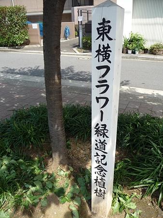 110622-東横廃線 東白楽→反町 (27)