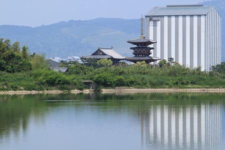薬師寺を大池から