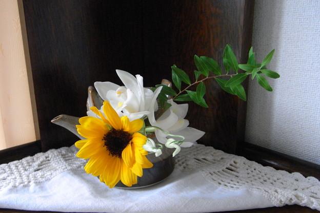 Photos: Small flower