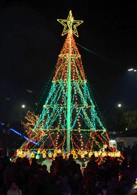 Brightness Tree?