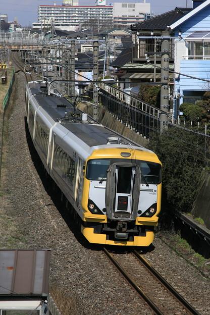 Photos: _MG_8484 E257系500番台 新宿さざなみ3号
