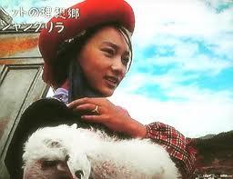 ツームー(雲南省少数民族)