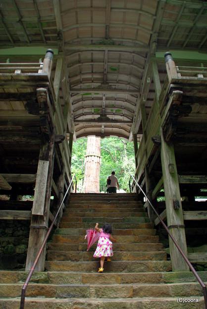 写真: 階段