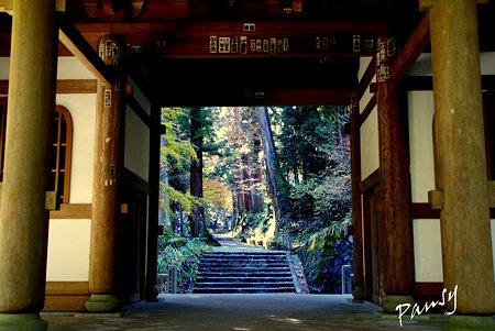 三門より・・大雄山最乗寺さんぽ・・25
