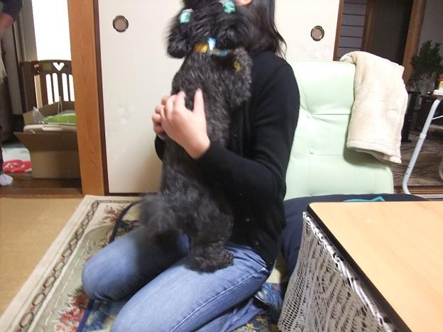 Photos: いらっしゃ~い♪