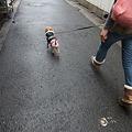 Photos: それじゃぁ出発!