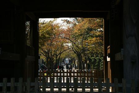 称名寺の三門風景!(111123)