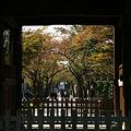 写真: 称名寺の三門風景!(111123)