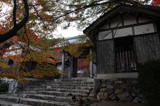 写真: 円通寺 - 14
