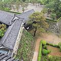Photos: 110511-106高知城・天守高欄から