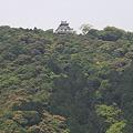 Photos: 110516-123岩国城