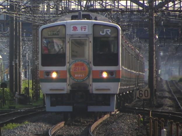 211系田町車 チタN1編成 「急行 伊豆」