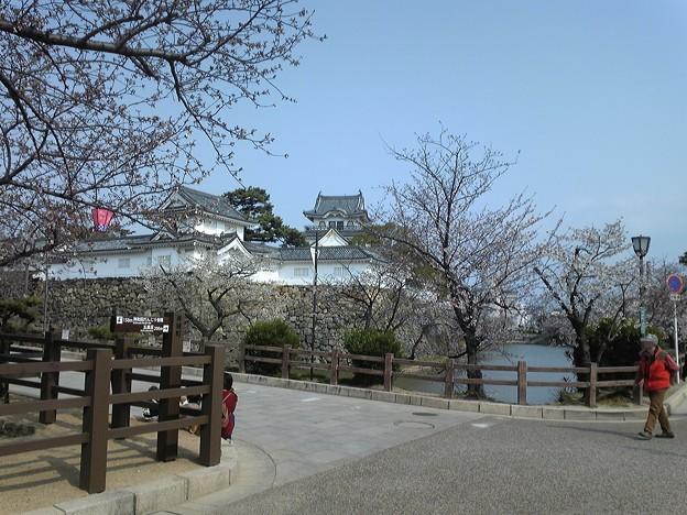 20120405_岸和田城_お城まつり36