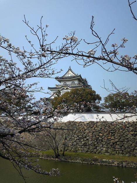 20120405_岸和田城_お城まつり49