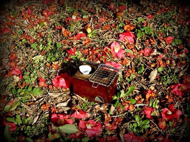 燗銅壺と花見 椿と翔鶴