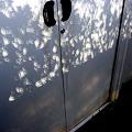 20120521 金環日食 (06) 木漏れ日もリングに