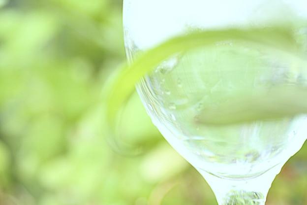 Photos: Green water