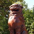 写真: 白山神社 狛犬