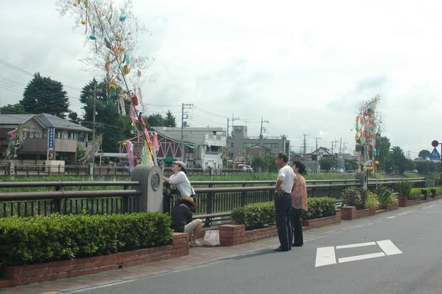 Photos: 七夕1