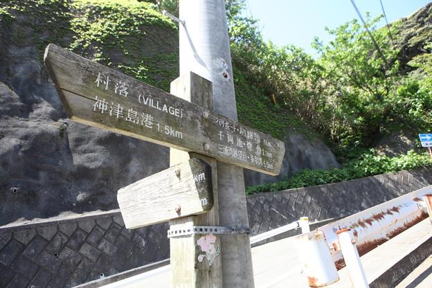 写真: IMG_6782神津島__天上山登山と島巡り