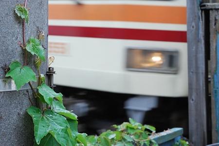 江ノ島駅近くにて