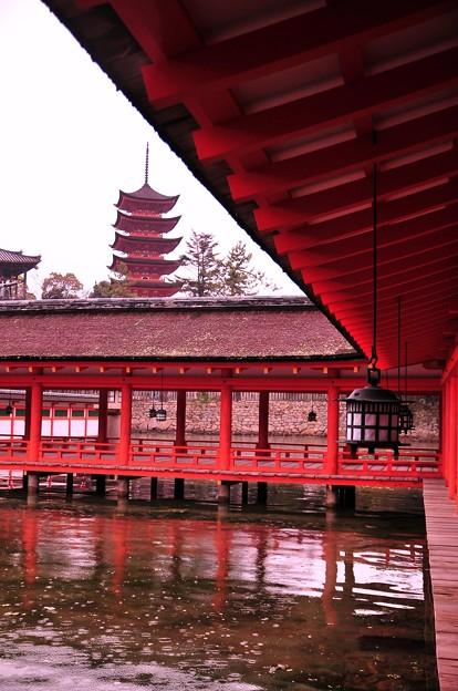 朝、雨の降る満潮の厳島神社から見た五重塔