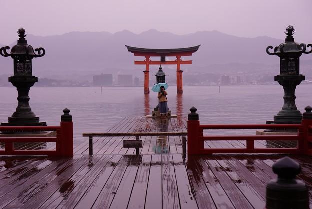 朝、雨の中。。一人で記念撮影?