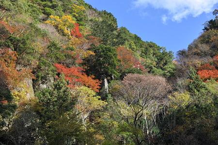 赤目四十八滝の紅葉・1